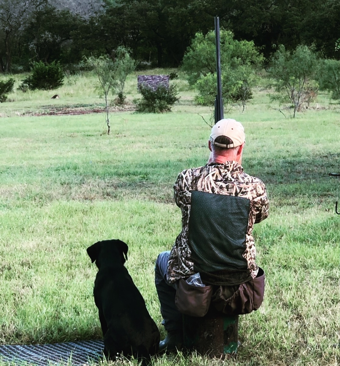 Started gun dogs texas